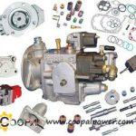 Cummins fuel pump parts   Genuine DCEC/CCEC fuel pump parts